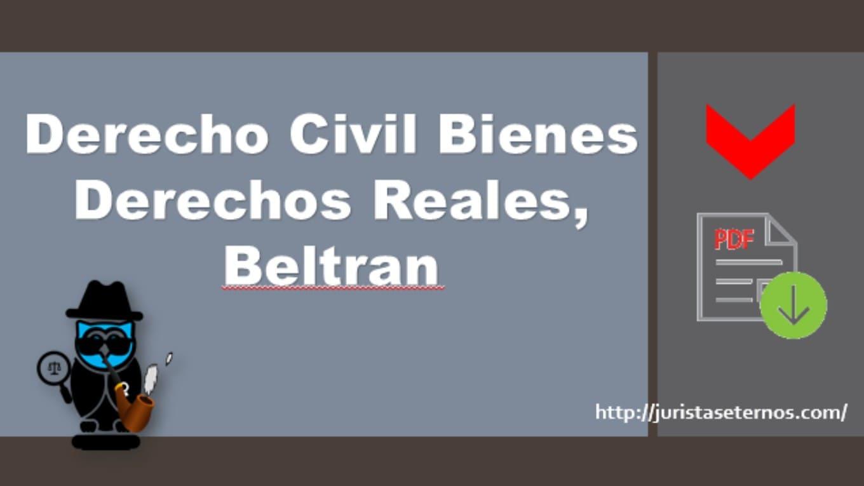 derecho civil bienes derechos reales beltran pdf