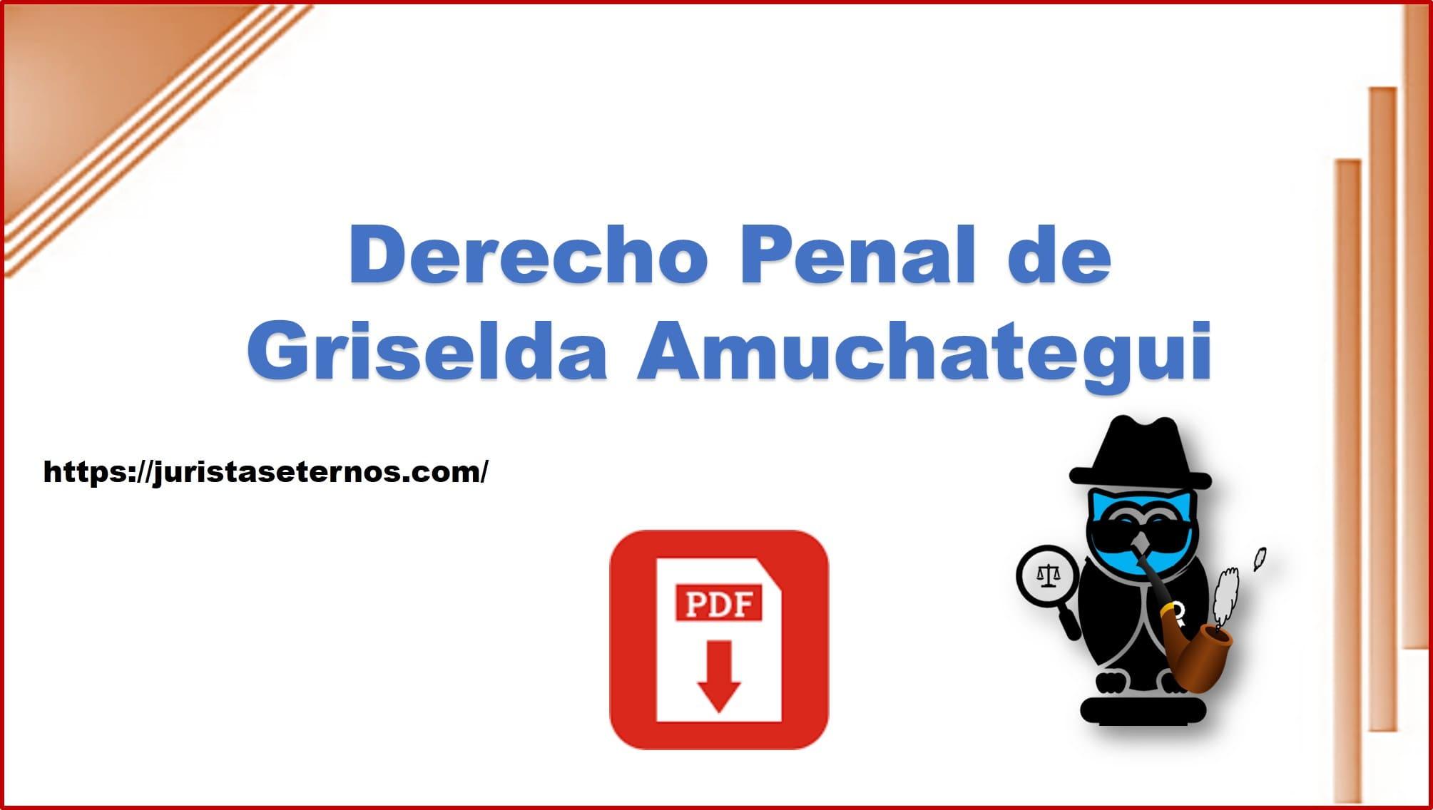 derecho penal griselda amuchategui pdf