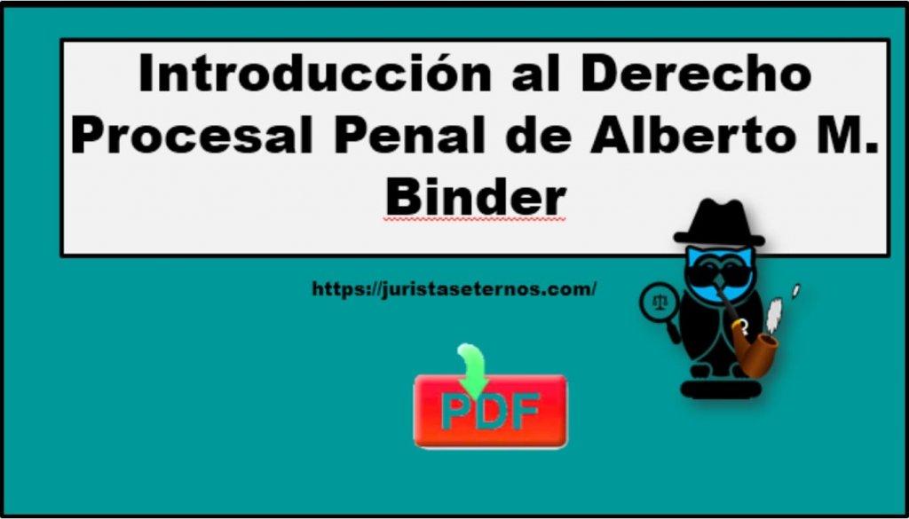introduccion al derecho penal alberto binder pdf